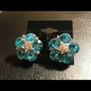 Jewelry - Aquamarine Crystal Cluster Earrings
